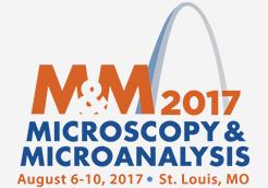 M&M 2017